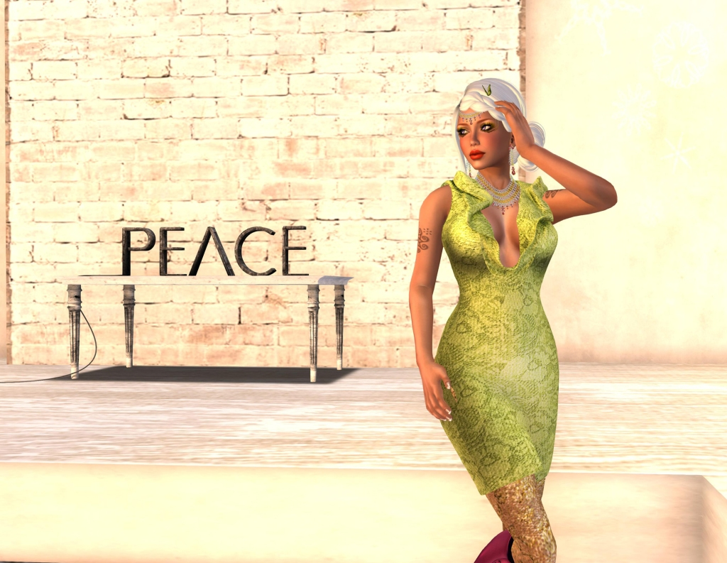 POE6 mesh dress front