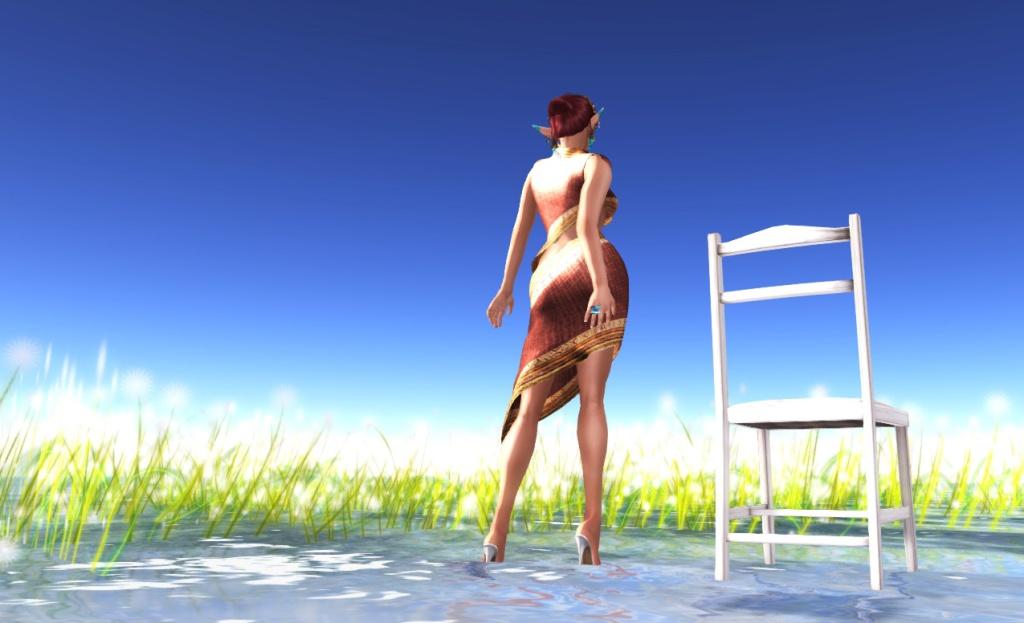 mesh-dress-back