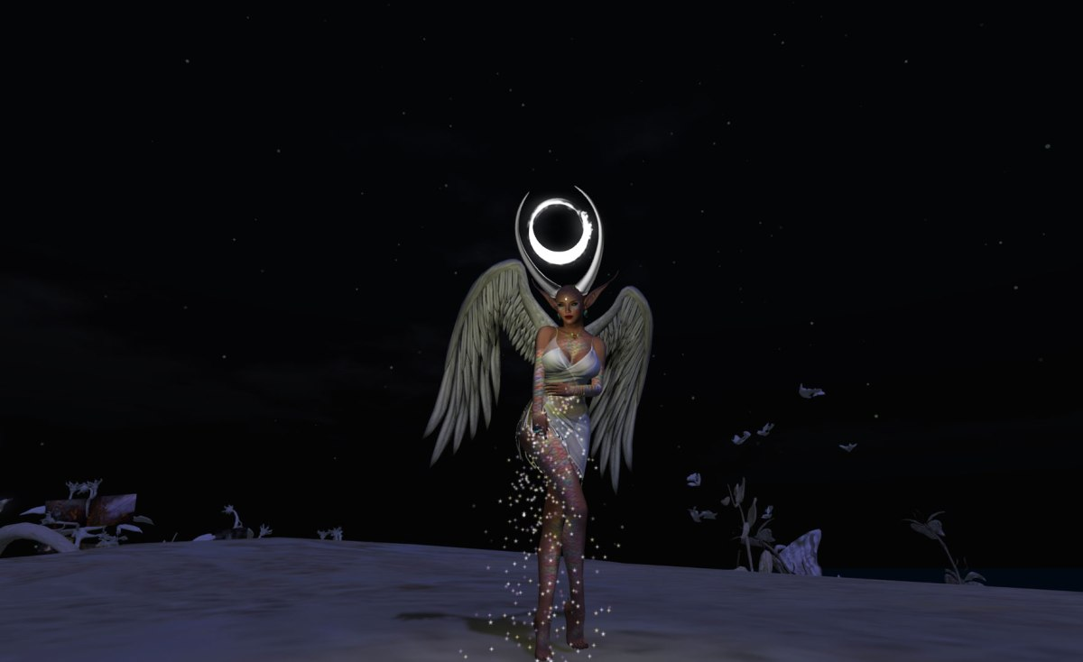 Day-4-Spreading-Our-Wings-at-night
